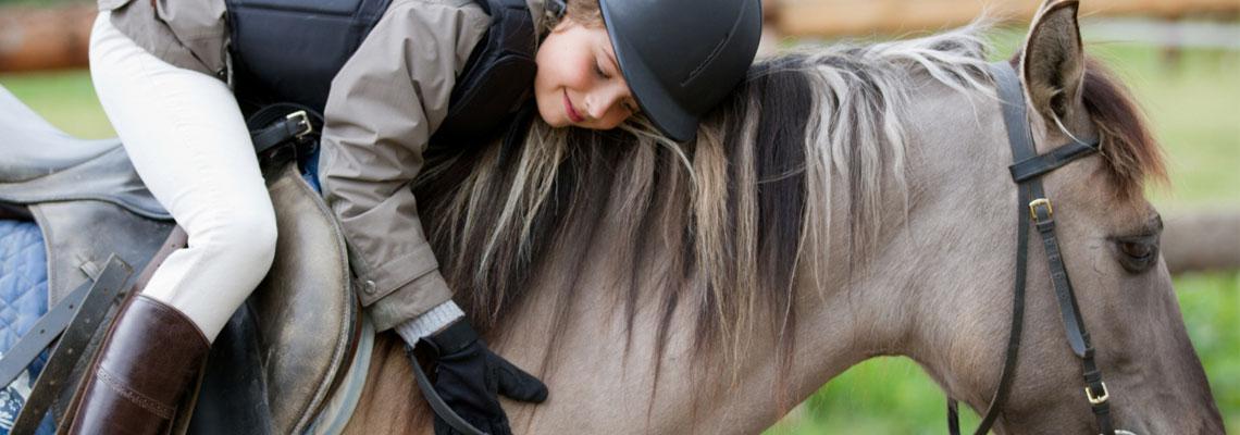 Apporter un confort maximum à votre cheval